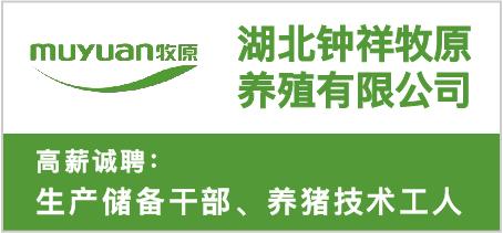 湖北钟祥牧原养殖有限公司