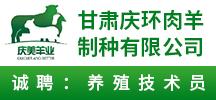 甘肃庆环肉羊制种有限公司
